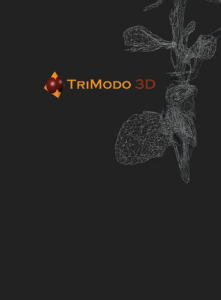 Web_TriModo_Basic